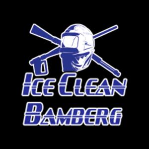 logo_iceclean